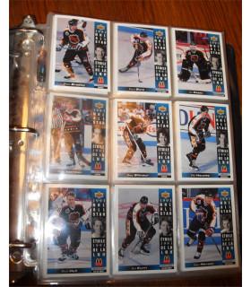 Intercalaire pour Cartes de collection NHL