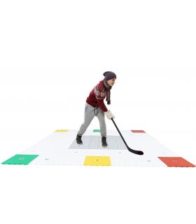 360 ZONE by Hockey Revolution