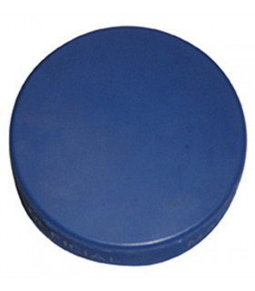 Palet Hockey bleu MINEUR allégé