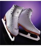 Patins et lames de patinage